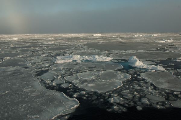 The Impact of Polar Ice on Our Planet's Evolution